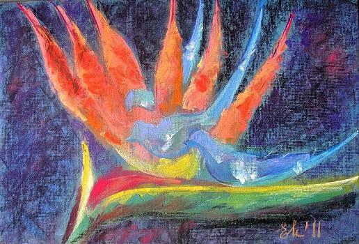 Bird of paradise by Elena Malec