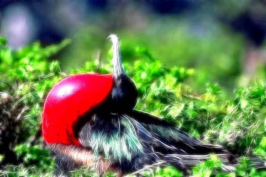 Bird by Ratan Sonal