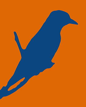 Ramona Johnston - Bird Silhouette Orange Blue