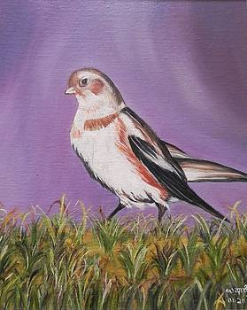 Bird by Usha Rai