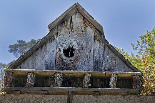 Mick Anderson - Birdhouse in Cambria