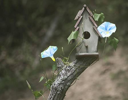 Birdhouse by Rebecca  Barray