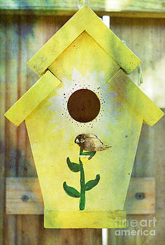 Birdhouse by Shirley  Taylor