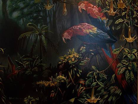 Birds of the Rain Forest by Robert E Gebler