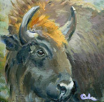 Bison Head by Lelia Sorokina