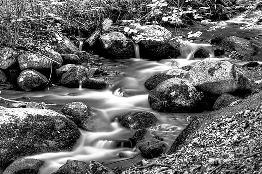 Black and White Creek by Mark East
