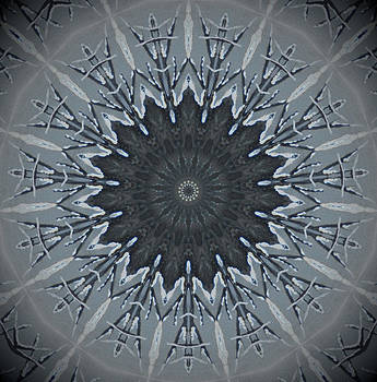 Black And White Kaleidoscope by Heather  Hubb