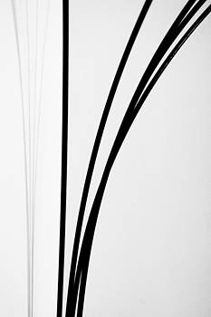 Black and white minimal lamp by Anya Brewley schultheiss
