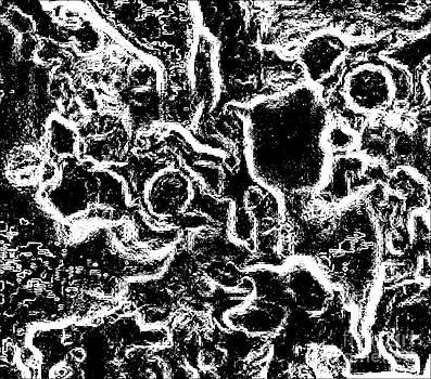 Drinka Mercep - Abstract Black White Drawing No.102