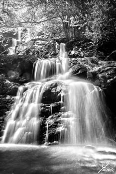 Black and White Shenandoah Falls by Shane York