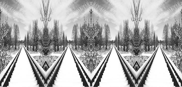 James Steele - Black and White Triple tracks