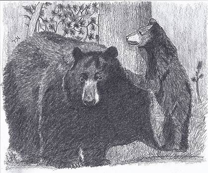 Black Bear Sow and cub by Tony  Nelson