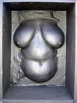 Black Box Venus by Marc David Leviton