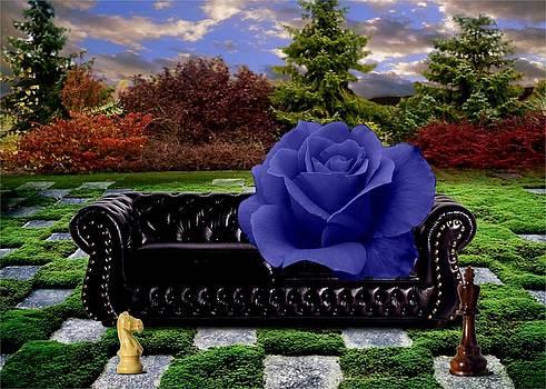 Black N Blue by Will Crane