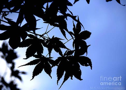 Black on Blue by Melissa Nickle