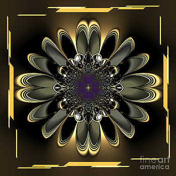 Black Orchid Abstract by Heinz G Mielke