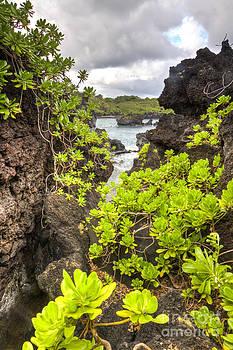 Black Sands Beach Hana Maui Hawaii 2 by Dustin K Ryan