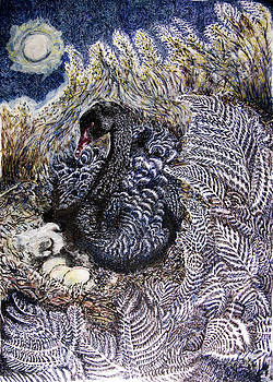 Black Swan Mother and Child by Helen Duley