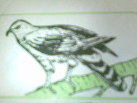 Blackbird  by OKORO  Judith