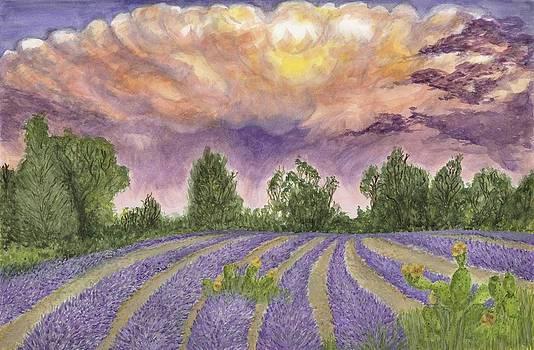 Blanco Thunderstorm by Jan Burley Hunt
