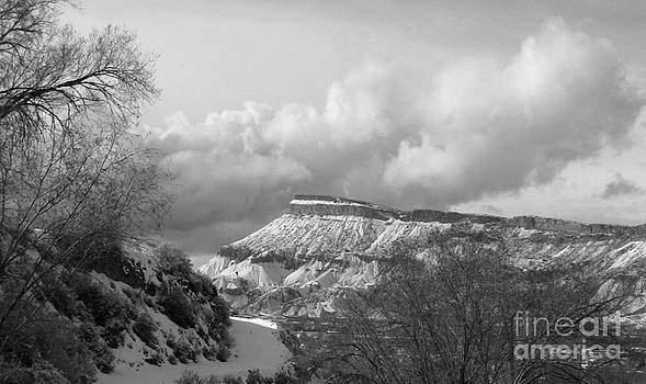 Blanket of White Neath Stormy Clouds by Lani PVG   Richmond