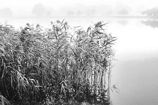 Blickling Lake by Simon Pocklington