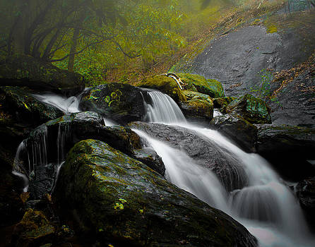 Blood Mountain Creek  by Christopher Mobley