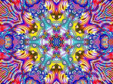 Blossom by Bobby Hammerstone