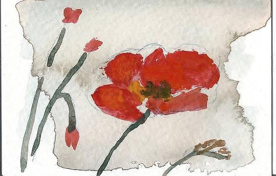 Blown In The Wind by Vera Romoda