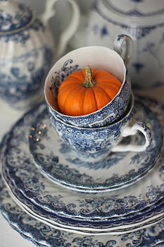 Blue and White Fall by Sherry Hahn