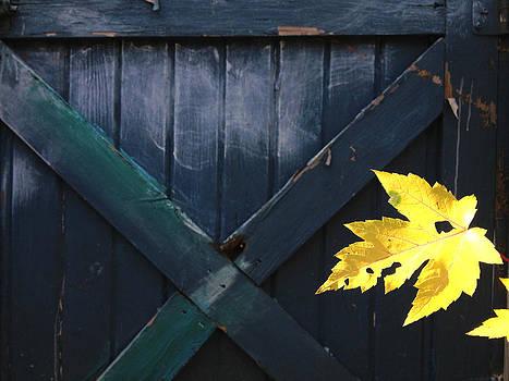 Blue Barn Door by Bob Lennox