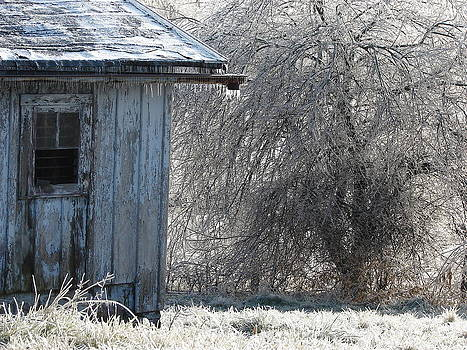 Blue Barn Winter by Cynthia Templin