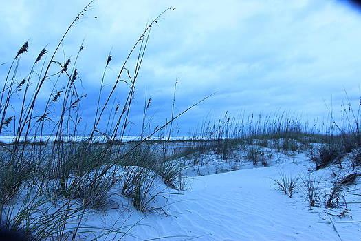 Blue Beach Hurricane 69 by Mike Wilber