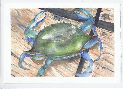 Blue Boy by Wendy Cunico
