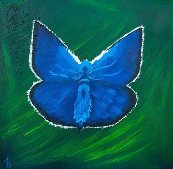 Blue Butterfly by Alex Banman