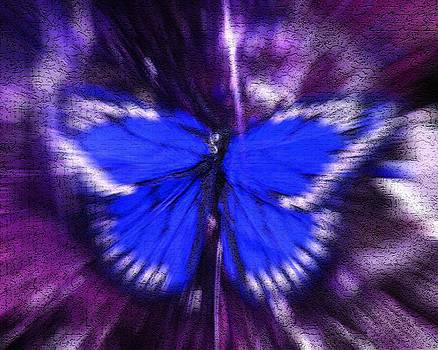 Blue Butterfly by Sherry Oliver