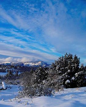 Blue Day by FeVa  Fotos