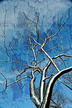 Marty Koch - Blue Dream