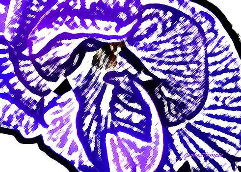 James Temple - Blue Flower