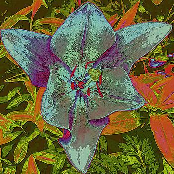 Blue Flower by Tracy Daniels