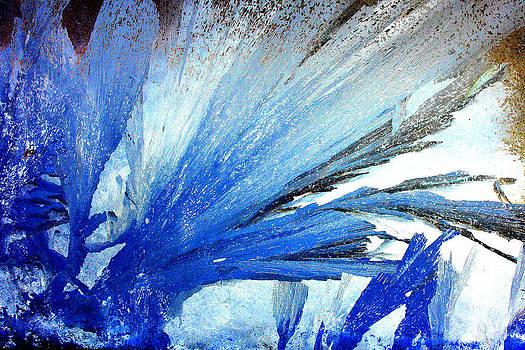 Blue Frost by Devon Stewart