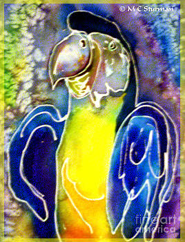 Blue Gold Macaw by M c Sturman