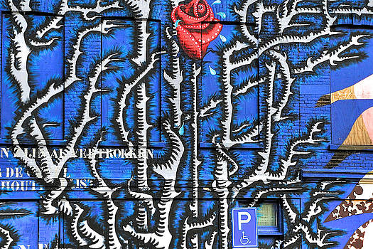 Blue Graffiti Wall with Rose by Ferry Ten Brink