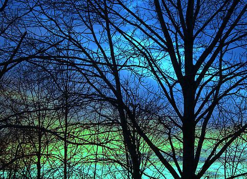 Blue Green Sky by Devon Stewart