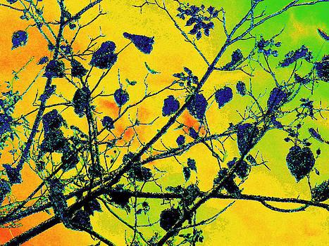 Blue Heart Tree Watercolor by Tracy Daniels