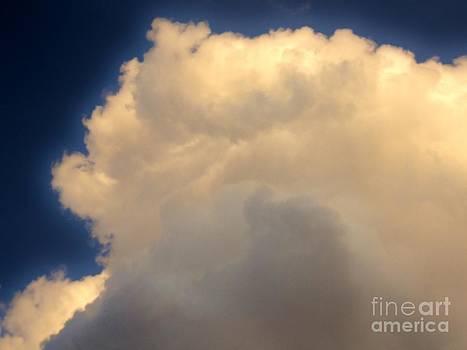 Blue Heavens by Elizabeth Hernandez