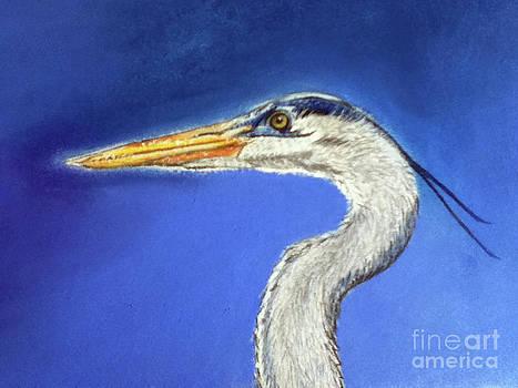 Blue Heron by Teresa Vecere