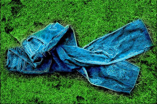 Blue Jean by Ratan Sonal