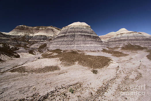 Adam Jewell - Blue Mesa At Petrified Forest