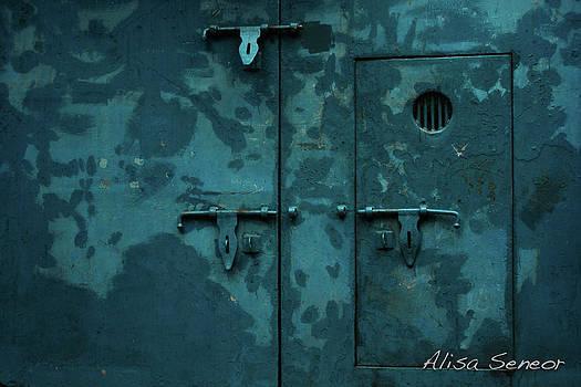 Blue Metal Door L by Alisa Seneor